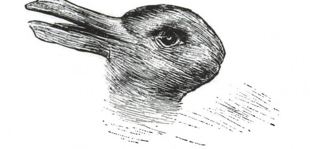 Image of Sonica 2013 The Eye of the Duck